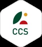 logo-exa-css