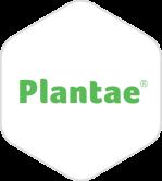 logo-exa-plantae